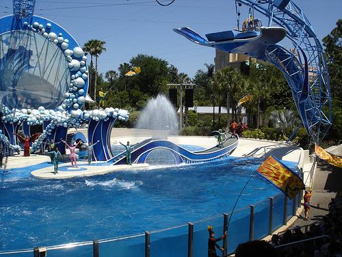 Sea World - San Diego Calfornia - Kids Travel